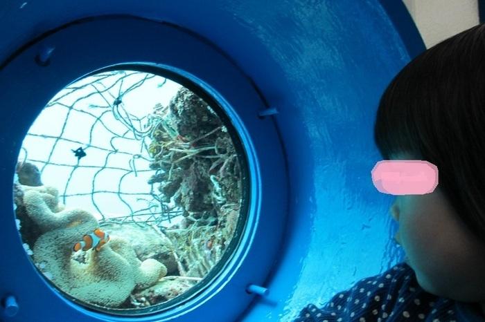 ブセナ海中公園海中展望塔