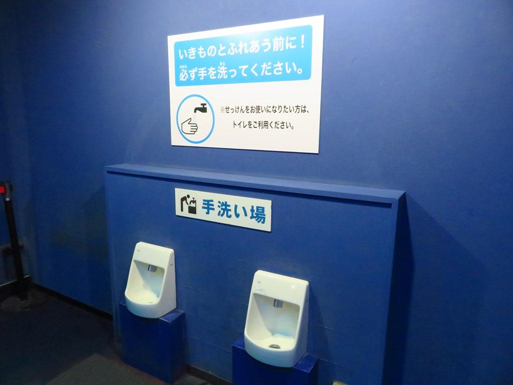 触る前と後はきちんと手を洗いましょう☆