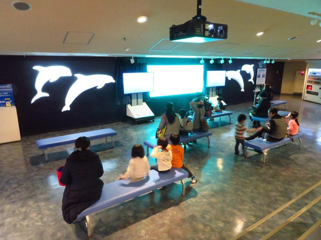 プロジェクションマッピングも行われているイルカの窓☆休憩スペースとしても大人気☆