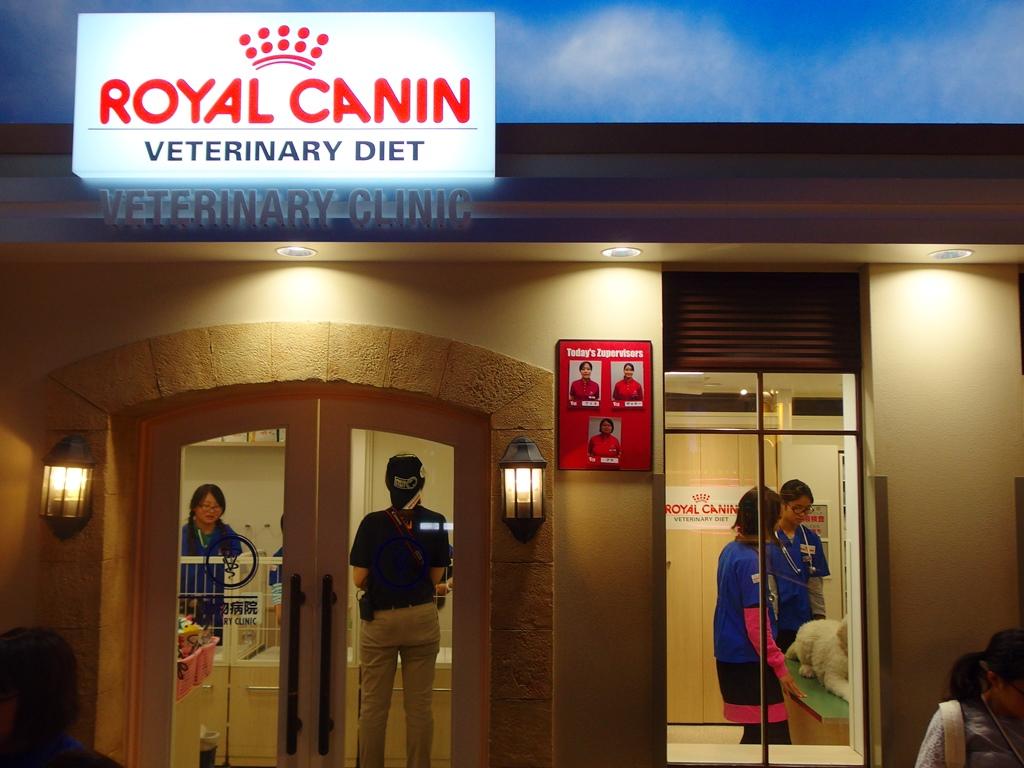 動物病院の職業体験