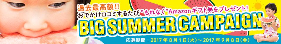 口コミ投稿してちょっぴり遅い夏のボーナスをゲット!!BIGSUMMERCAMPAIGN