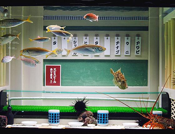 おもしろ水族館 ギャラリー3