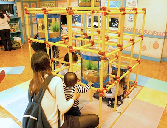 赤ちゃん水族館 ギャラリー6