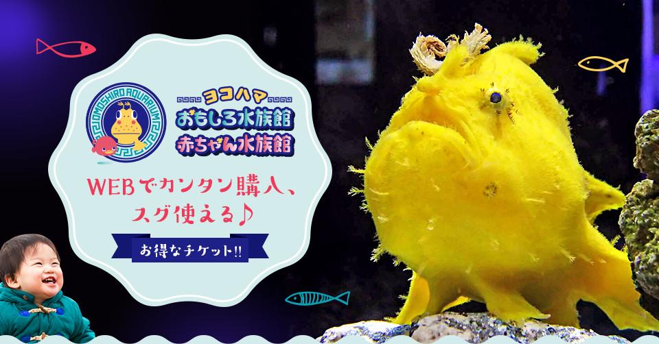 ヨコハマおもしろ水族館 赤ちゃん水族館 割引チケットをご購入の方限定 オリジナルノベルティ(オマケ)プレゼント