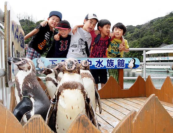 パノラマペンギンプールとオウサマペンギン