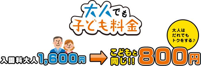 入園料大人 1,600円 → 800円