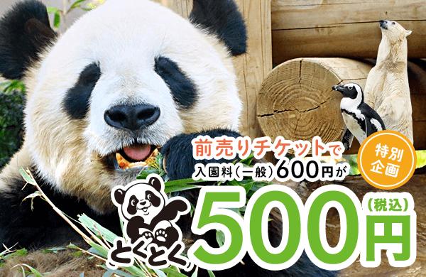 上野動物園 WEBかららくらくチケットGET!