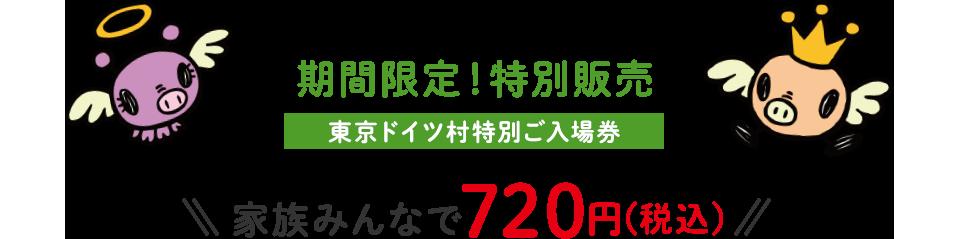 期間限定!特別販売 東京ドイツ村特別ご入場券 家族みんなで720円(税込)