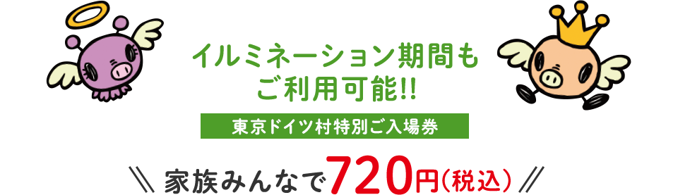 イルミネーション期間もご利用可能!!東京ドイツ村特別ご入場券 家族みんなで720円(税込)