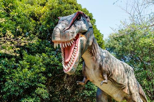 恐竜にもあえる!恐竜の棲む森を探検!
