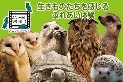 オービィ大阪 photo1