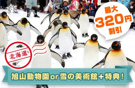 北海道旭川市の周遊チケット。旭山動物園の入園チケットや雪の美術館の入館チケットに、周辺スポットのお得な特典がついてくる。