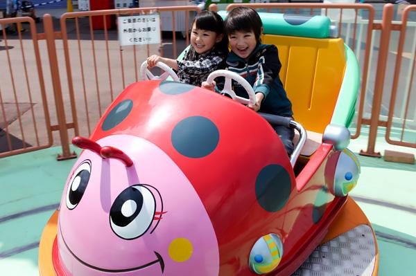 日本モンキーパークのレディ・バード