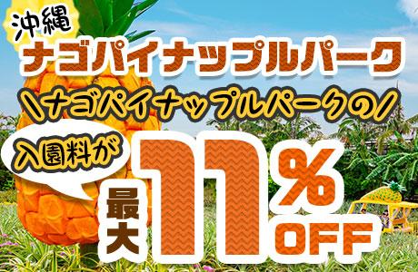 【入園料が最大11%オフ】ナゴパイナップルパーク入園料やソフトクリームのセットがお得!