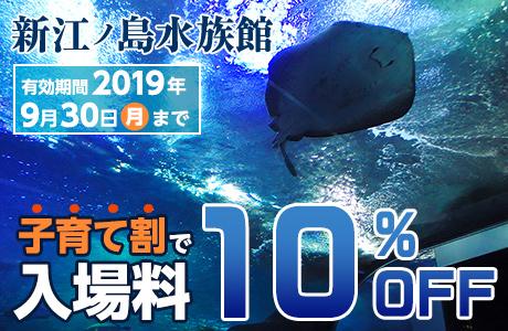 新江ノ島水族館の入園料が10%OFF!EPRAKフェスティバルのクーポン子育て割で、入場料が10%OFFになるクーポン