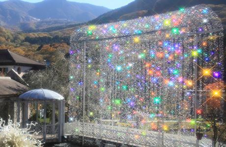 箱根ガラスの森美術館 入館料100円OFFクーポン