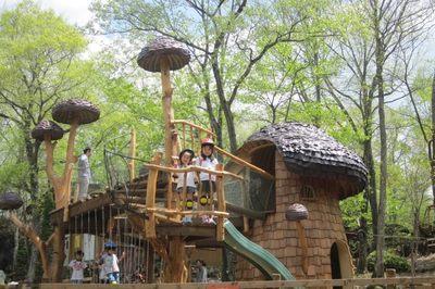 約20種類のアスレチックで遊ぶことができる「わくわく大冒険の森」