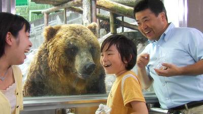 ここはクマがいっぱいの動物園!個性豊かなクマ達が待ってます