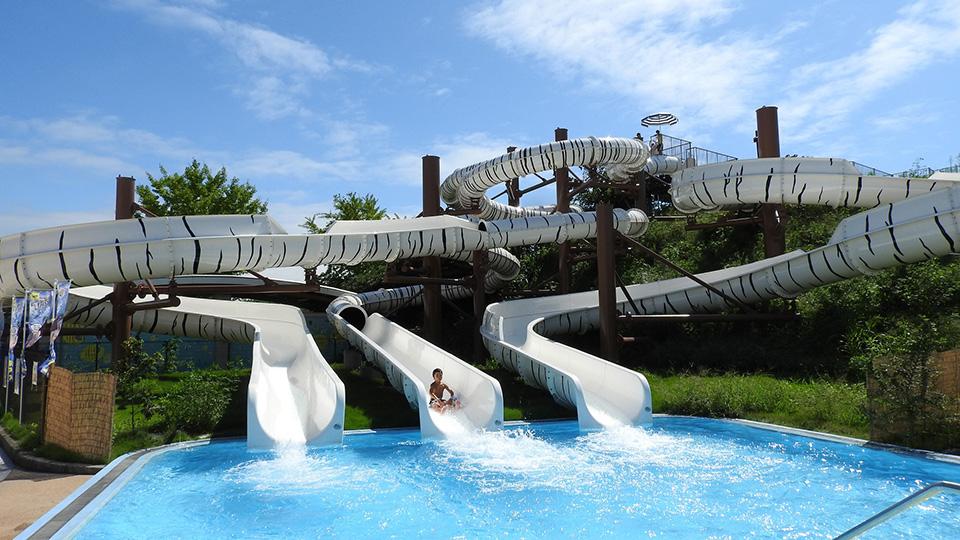夏はたっぷりプール遊び!タイガースプラッシュ!