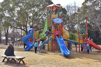 子どもたちとお花見やピクニックするなら、園内2ヵ所の遊具エリアへ