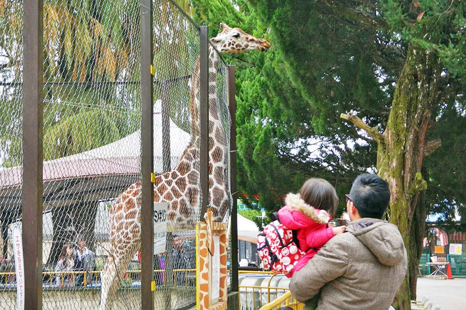 池田 動物園