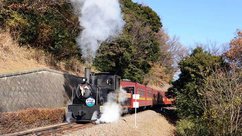 愛知こどもの国 蒸気機関車(SL)