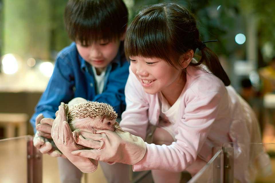 動物園では見るだけの動物ともふれあえるアニマルスタジオ!