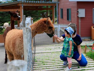 王国ファーム…牧場に暮らす動物たちの家にお邪魔します!