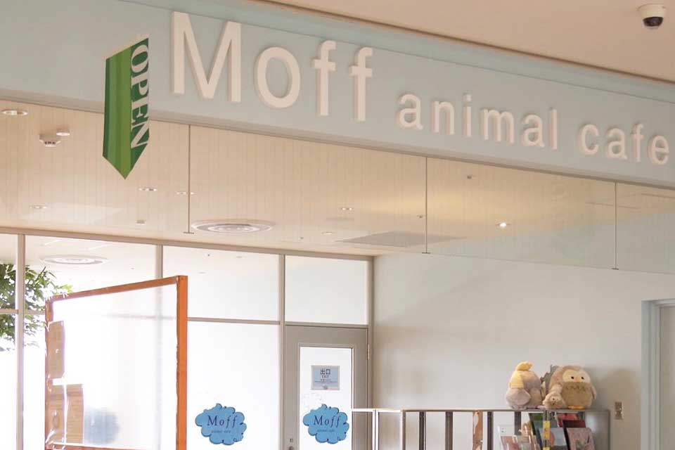 Moff animal cafe 小田原ダイナシティ店へのアクセス