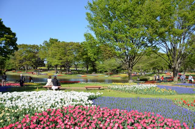 国営昭和記念公園へのアクセス