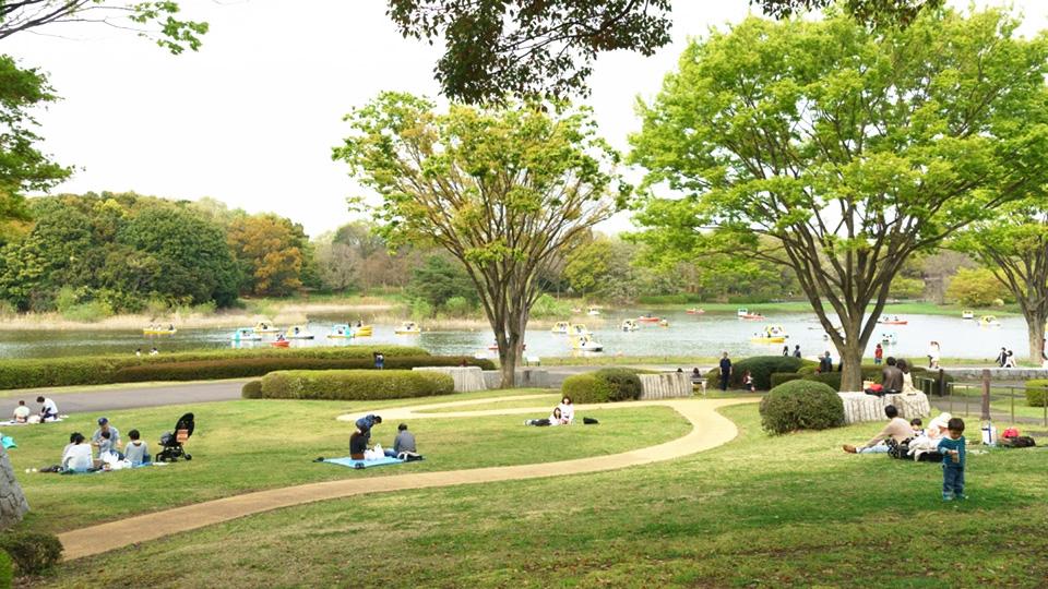 国営昭和記念公園の湖畔でピクニック♪