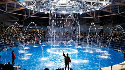 360度スタジアム型の会場で開催するドルフィンパフォーマンス