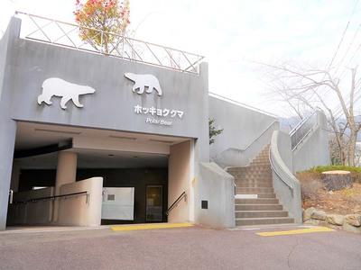 王子動物園 ホッキョクグマ