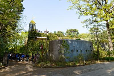 緑がいっぱいの美術館