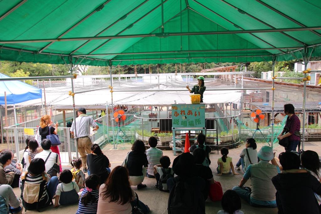 横浜市の無料動物園、野毛山動物園