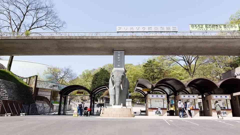 広い多摩動物公園