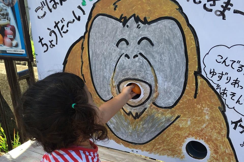 子どもが喜ぶ仕掛けがいっぱい!飼育員さんの愛のこもった手作り作品