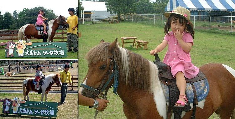 ポニー乗馬体験をしよう!