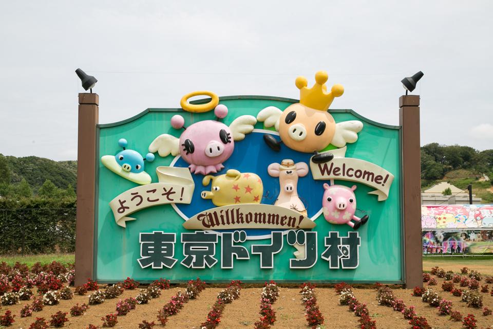 東京ドイツ村へのアクセス