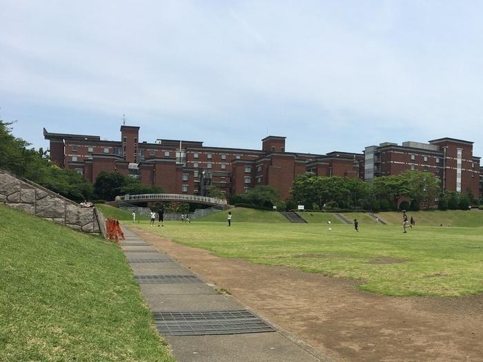 芝生園地 (静岡県立大学隣)
