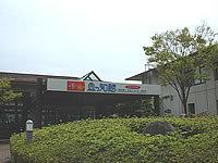 関西電力 宮津エネルギー研究所丹後魚っ知館
