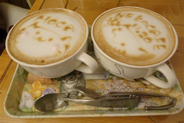 ネコカフェと猫雑貨のお店 猫の手