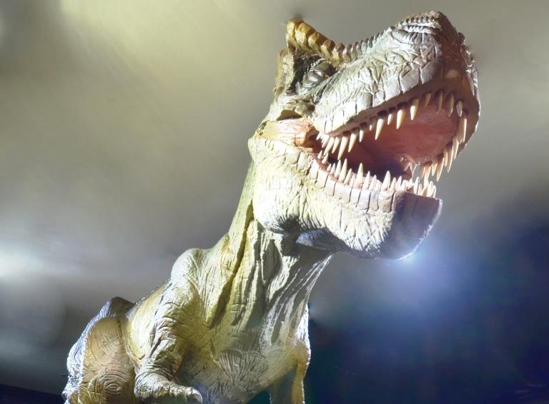 日光・鬼怒川3D宇宙・恐竜館