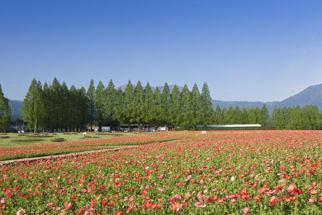 生駒高原観光レクレーションセンター