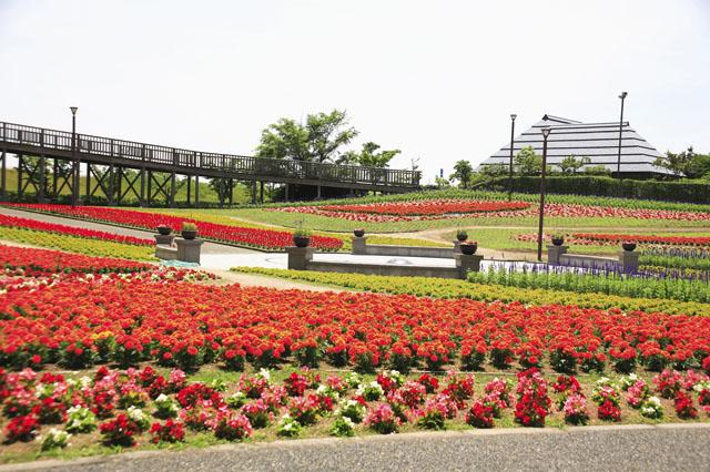 道の駅 新潟ふるさと村