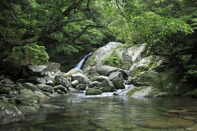 自然休養林白谷雲水峡自然歩道