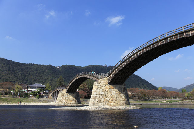 錦帯橋さくら舟