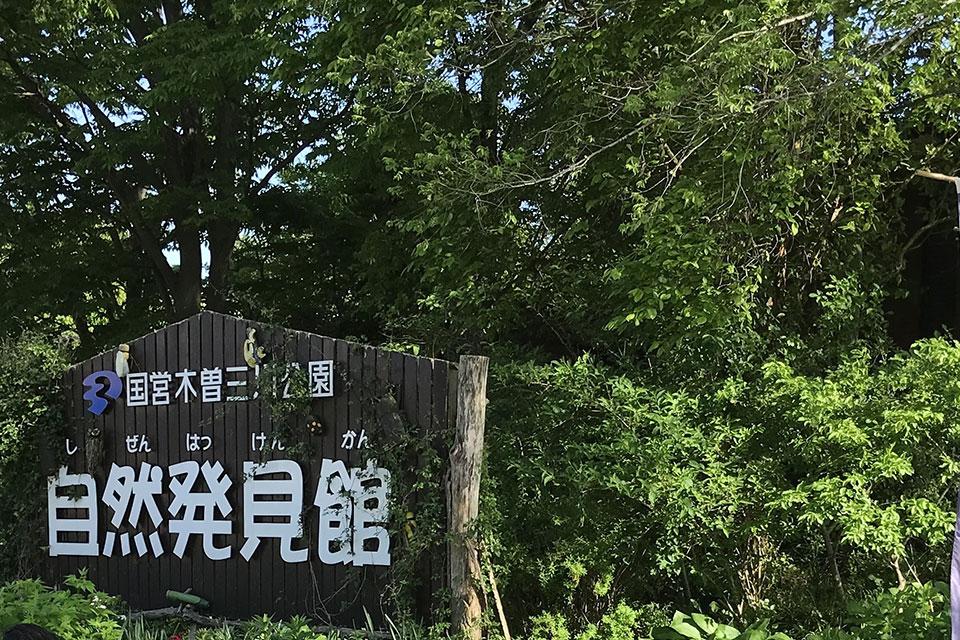 国営木曽三川公園 河川環境楽園(木曽川水園・自然発見館)