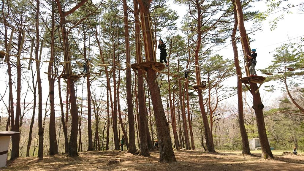 那須の森の空中アスレチック『NOZARU』