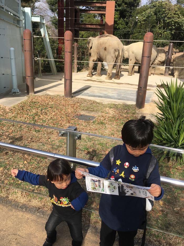 久々の上野動物園